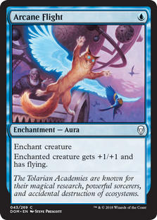 Arcane Flight  Enchant creatureEnchanted creature gets +1/+1 and has flying.