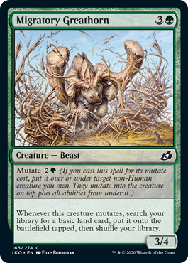 Migratory Greathorn  Mutate  (If you cast this spell for its mutate cost, put it over or under target non-Human creature you own. They mutate into the creature on top plus all abilities from under it.)Whenever this creature mutates, search your library for a basic land card,