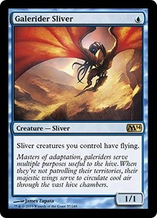 Galerider Sliver  Sliver creatures you control have flying.