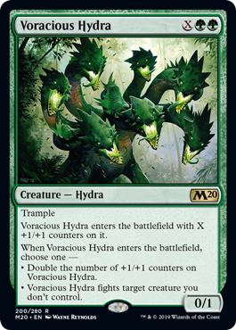 Voracious Hydra  TrampleVoracious Hydra enters the battlefield with X +1/+1 counters on it.When Voracious Hydra enters the battlefield, choose one —• Double the number of +1/+1 counters on Voracious Hydra.• Voracious Hydra fights target creature you don't control.