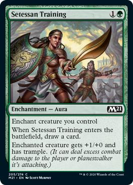 Setessan Training  Enchant creature you controlWhen Setessan Training enters the battlefield, draw a card.Enchanted creature gets +1/+0 and has trample. (It can deal excess combat damage to the player or planeswalker it's attacking.)