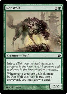 Rot Wolf  Infect (This creature deals damage to creatures in the form of -1/-1 counters and to players in the form of poison counters.)Whenever a creature dealt damage by Rot Wolf this turn dies, you may draw a card.