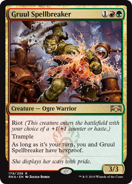 Gruul Spellbreaker  Riot (This creature enters the battlefield with your choice of a +1/+1 counter or haste.)TrampleAs long as it's your turn, you and Gruul Spellbreaker have hexproof.
